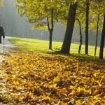 Pensioners walking — Stock Photo