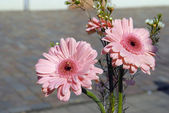 Pink flowers bouque — Stock Photo