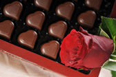 Chocolate and red rose — Stock Photo