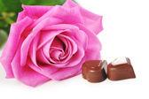 Rose und schokolade — Stockfoto