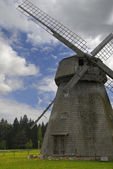 Old mill at dandelion field — Stock Photo