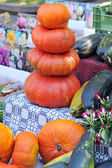 Pumkins at the market — Stock Photo