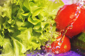 Tomatoes, cucumber and splashes — Stock Photo