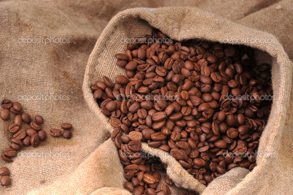 Many coffee grains on rough fabric  Stock Photo #2659206