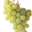 Green grapes — Stock Photo #2672688