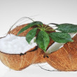 Coconut and leaves — Stock Photo
