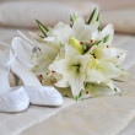 Different bride accessories — Stock Photo
