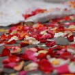 Rose petals on ground — Stock Photo