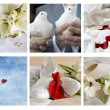 Different wedding simbols — Stock Photo
