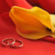 alianças de casamento e uma flor amarela no vermelho — Foto Stock
