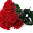 Beautiful red roses — Stock Photo #2673718