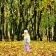 Girl playing in autumn park — Stock Photo #2673811