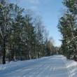 paisaje invernal con la carretera — Stok fotoğraf