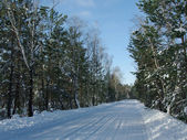 Winter landscape with road — Stockfoto