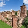Heidelberg Schloss — Stock Photo #2679739