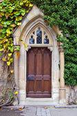старая дверь — Стоковое фото