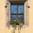 Stock Photo: Window in Regensburg