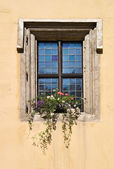 Window in Regensburg — Stock Photo