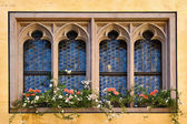 Windows in Regensburg — Stock Photo