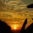 Sunset in the tropics — Stockfoto