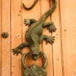 Metal knocker shaped dragon or lizard — Stock Photo