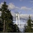Stock Photo: Wind turbine in amongst trees