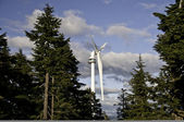 Wind turbine in amongst the trees — Stock Photo