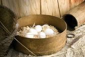 It is eggs — Stockfoto
