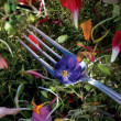 Edible Flower on a Fork — Stock Photo