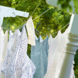 Clothes Drying on Clothesline - Stock Photo