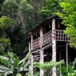 Longhouse in Sarawak — Stock Photo #2674802