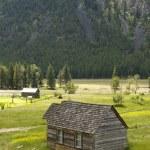 Rustic Cabin in Rural Setting — Stock Photo