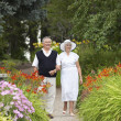 Mature Couple Strolling In Park - Stock Photo