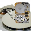 3.5 and 1 inch Hard disks — Stock Photo #2653062