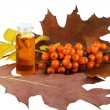 medical oil from sea-buckthorn berries — Stock Photo