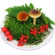 Stock Photo: Mushrooms, moss, berries