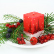 Christmas composition with wood berries — Stock Photo