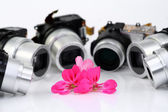Flower and objectives of compact c — Stock Photo