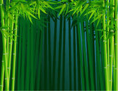 Bamboo Forest Background — Stock Vector
