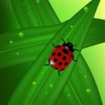 Ladybug — Stock Vector #2665355