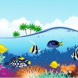 Sea life tropical - Stock Vector