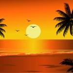 Beach sunset — Stock Vector