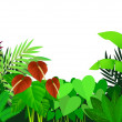 Stock Vector: Beautiful tropical forest