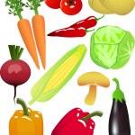 Vector vegetable — Stock Vector #2665492