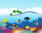 Sea life tropical — Stock Vector