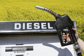 Biodiesel — Stock Photo
