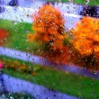 Autumn in my window — Stock Photo #2648279