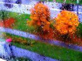 Autumn in my window — Stock Photo