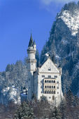 The castle of Neuschwanstein, Fuessen, G — Stock fotografie