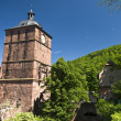 RED CASTLE IN HEIDELBERG — 图库照片
